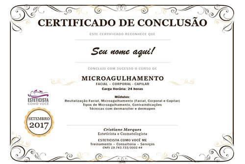 Certificado do Curso de Microagulhamento Online